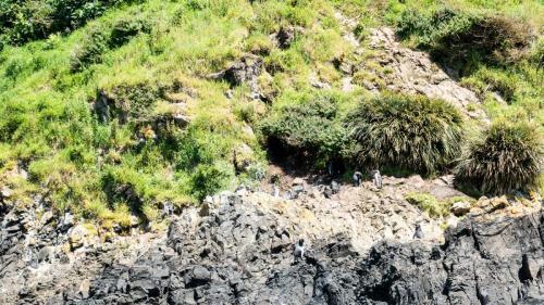 Insel Chiloe-104