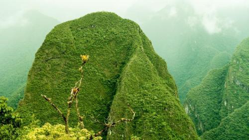 Macchu Picchu-117